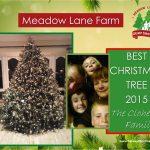 2015 Clahertys tree certificante
