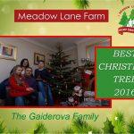 2016 Guiderova tree certificante