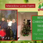 2017 McHale Christmas Tree