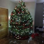 2017 trees decorated 11