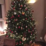 2017 trees decorated 21