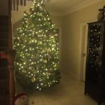 2017 trees decorated 26