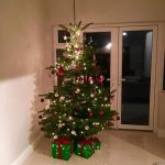 2017 trees decorated 30