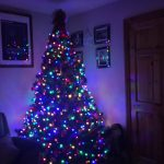 2017 trees decorated 36