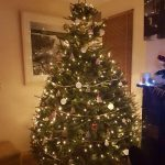 2017 trees decorated 46