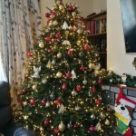 2017 trees decorated 7