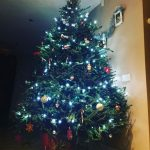 2017 trees decorated 8