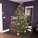 2017 trees decorated 9