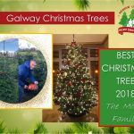 2018 Moone Family Christmas Tree
