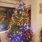 2018 trees decorated 21